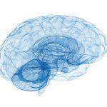 Neurofeedback con Patricia Conejero